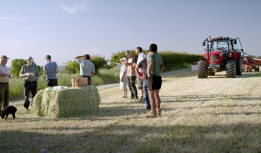 Equi-Grass Today! 2020
